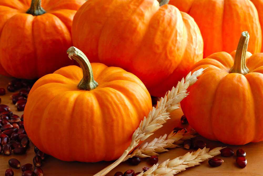 la zucca: vitamine e antiossidanti