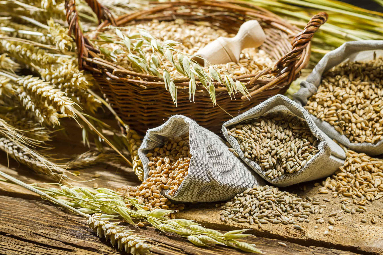 Fibre alimentari: cosa sono, dove si trovano e perché sono cosi importanti?