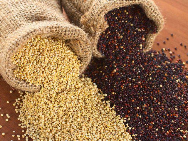 quinoa: cerale prezioso