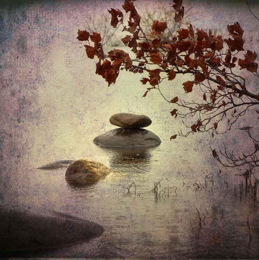 il vero miracolo - storia zen