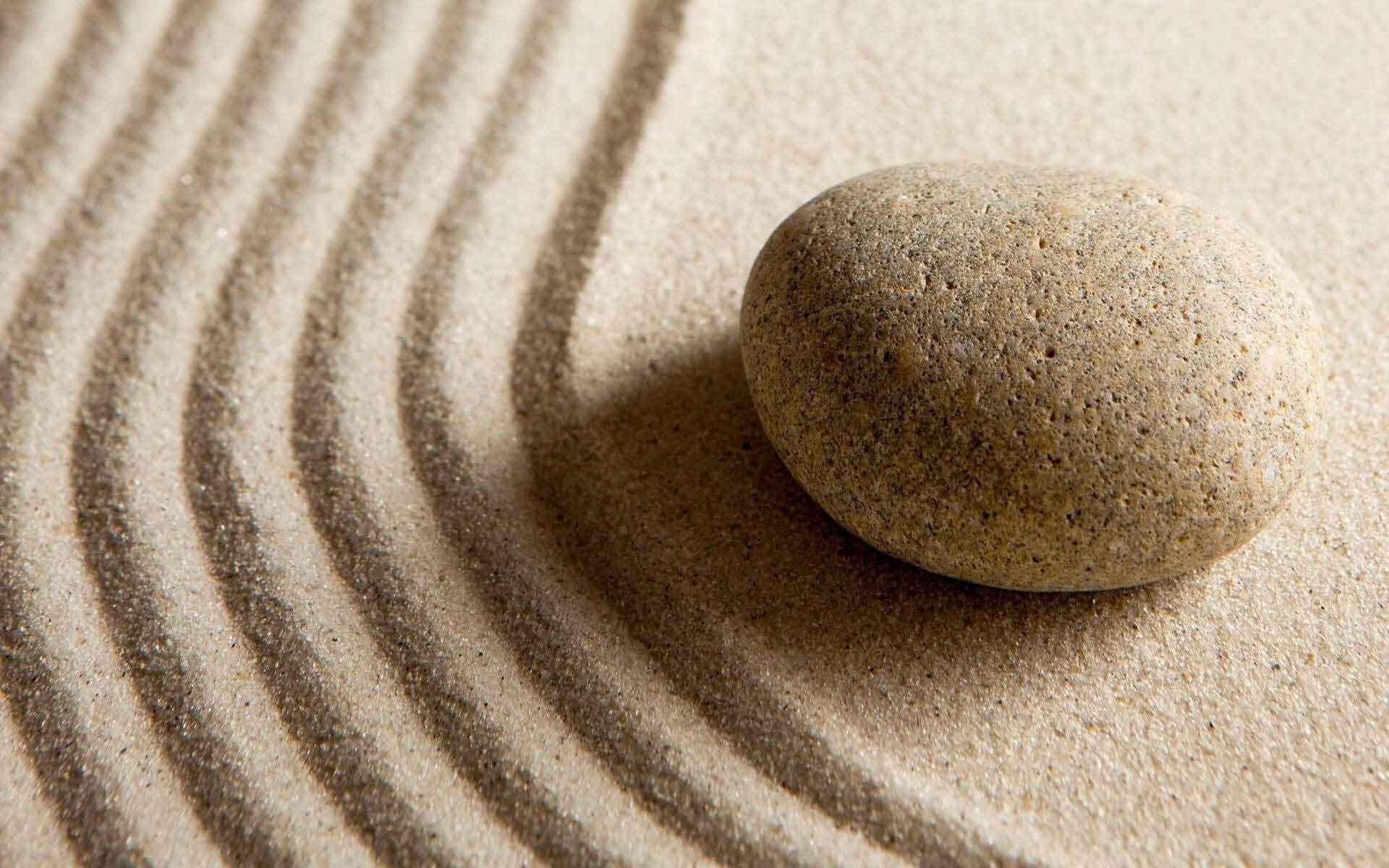 Storia Zen: Nessun legame con la polvere