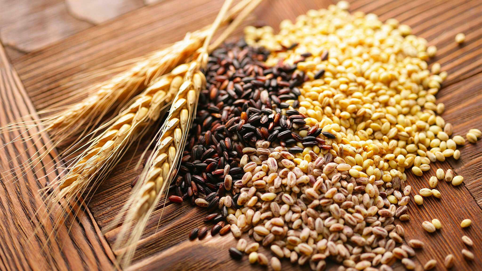 cereali integrali - quali sono i cereali integrali?