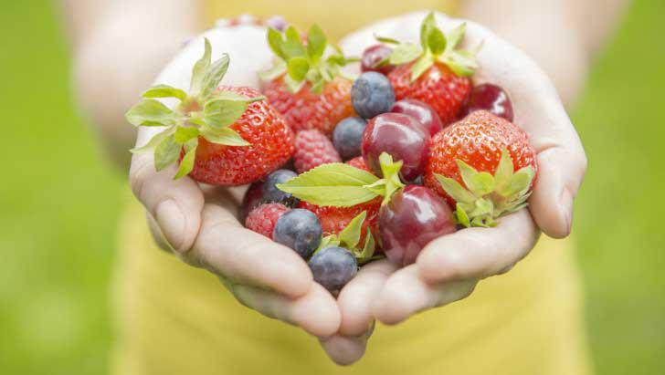 metodo kousmine per un'alimentazione sana