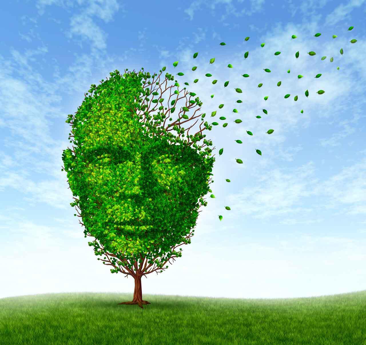 Come migliorare la memoria - prestazioni mentali