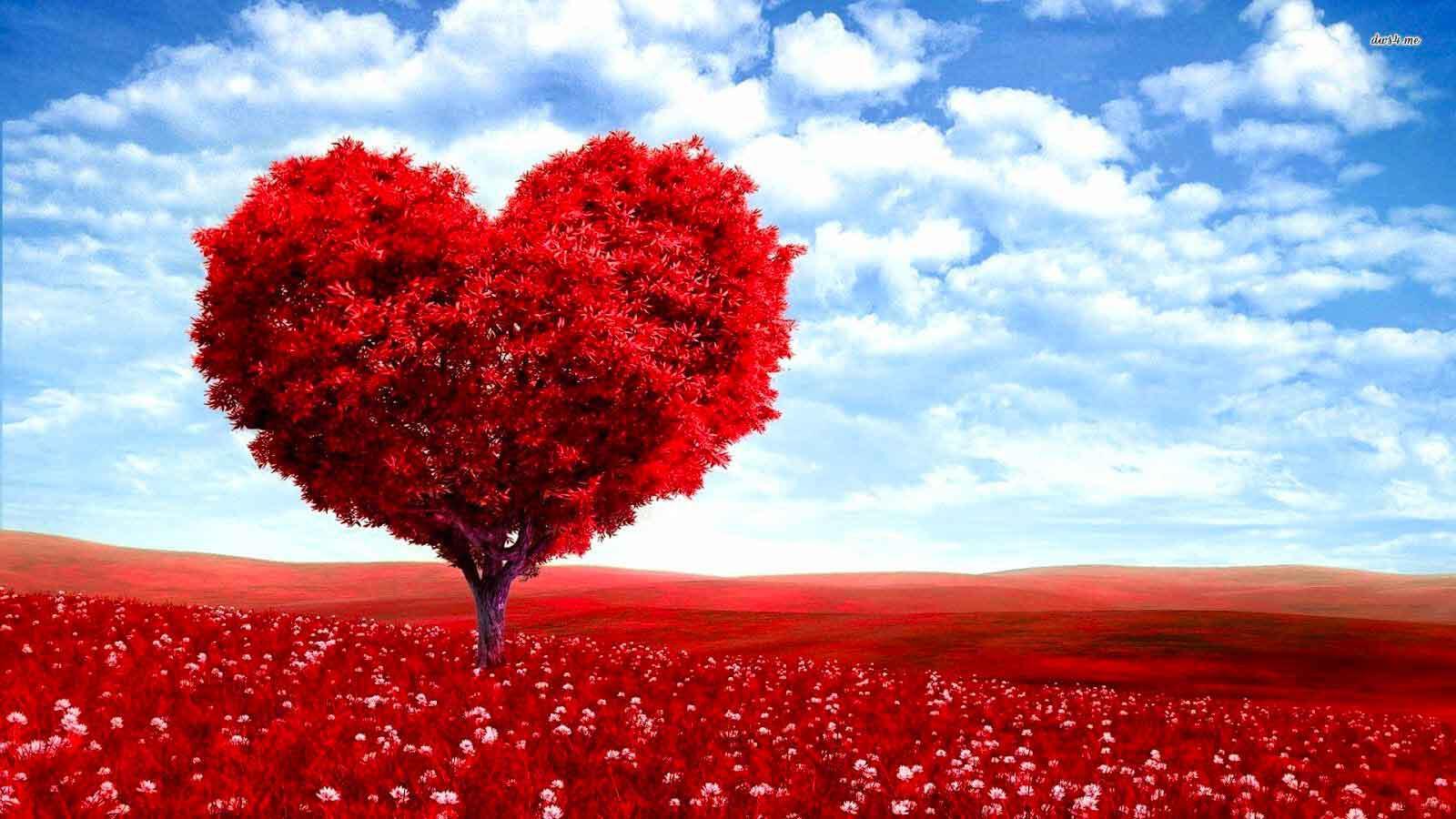 """sull'amore da Khalil Gibran dal suo libro """"il Profeta"""""""