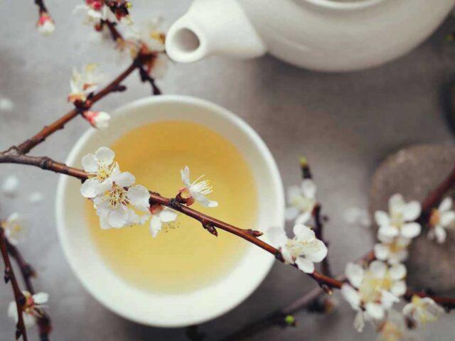 té bianco proprietà