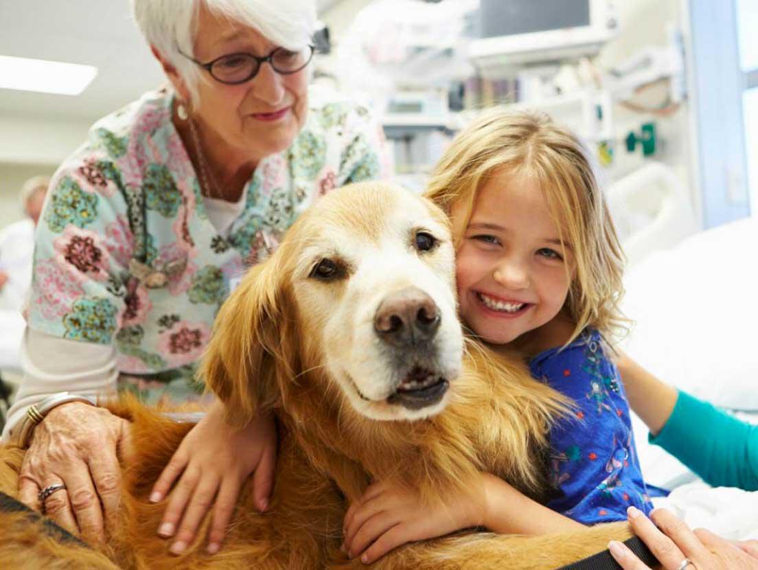 Pet therapy: cos'è e come ci può aiutare il nostro cane?