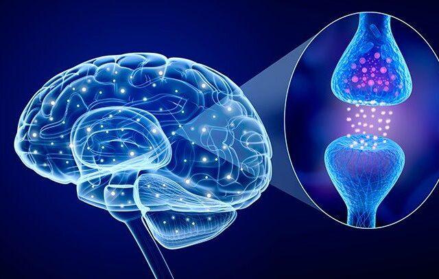 La Serotonina cos'è?