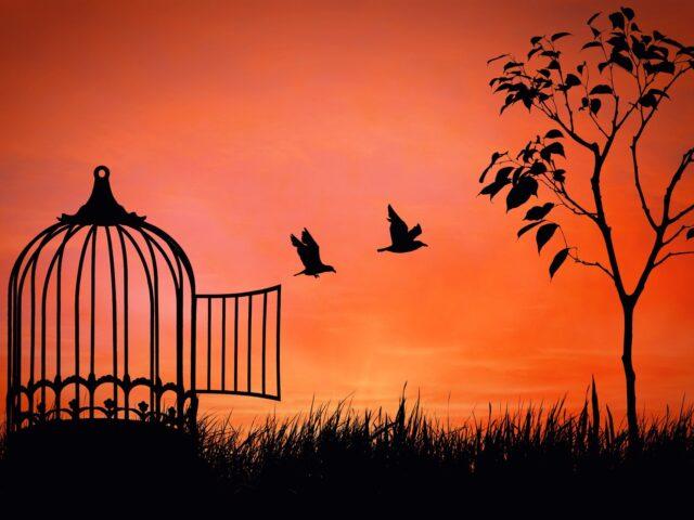 """La libertà di Khalil Gibran da """"Il Profeta"""""""